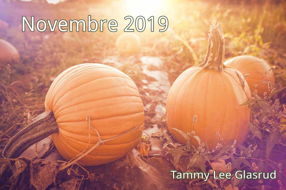 Novembre newsletter 2019