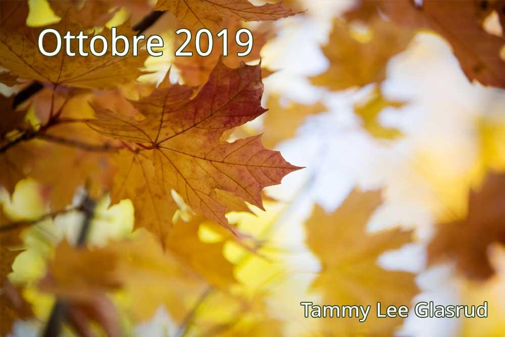 Ottobre newsletter 2019