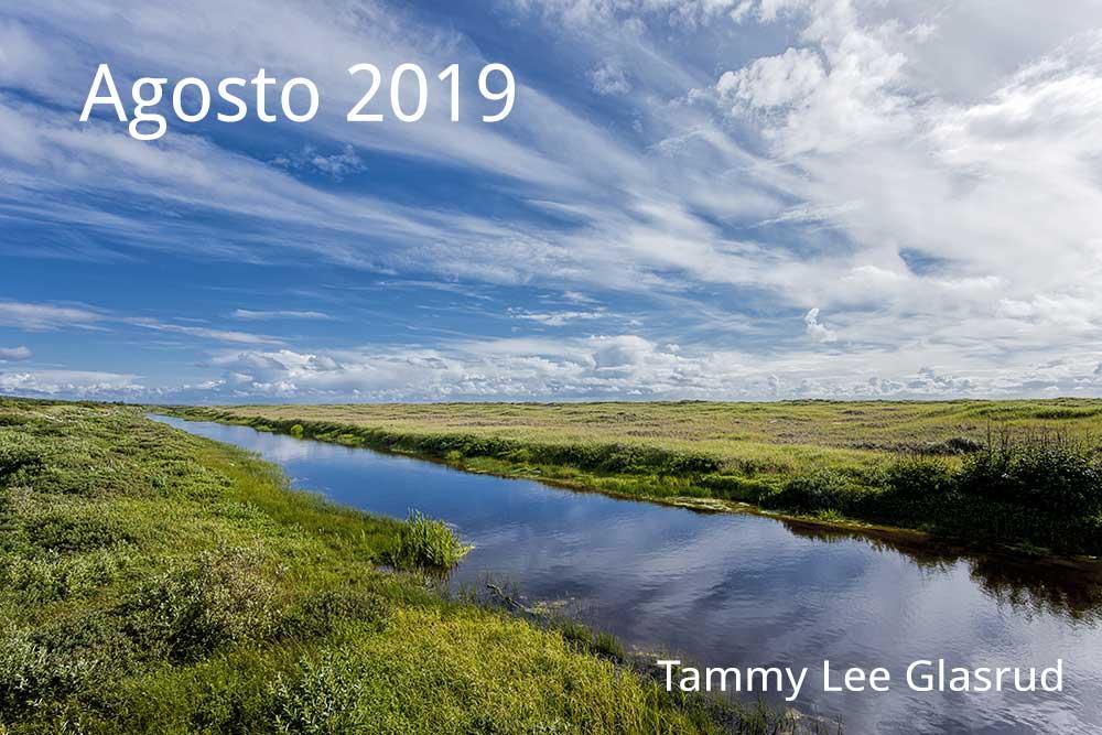 Agosto newsletter 2019