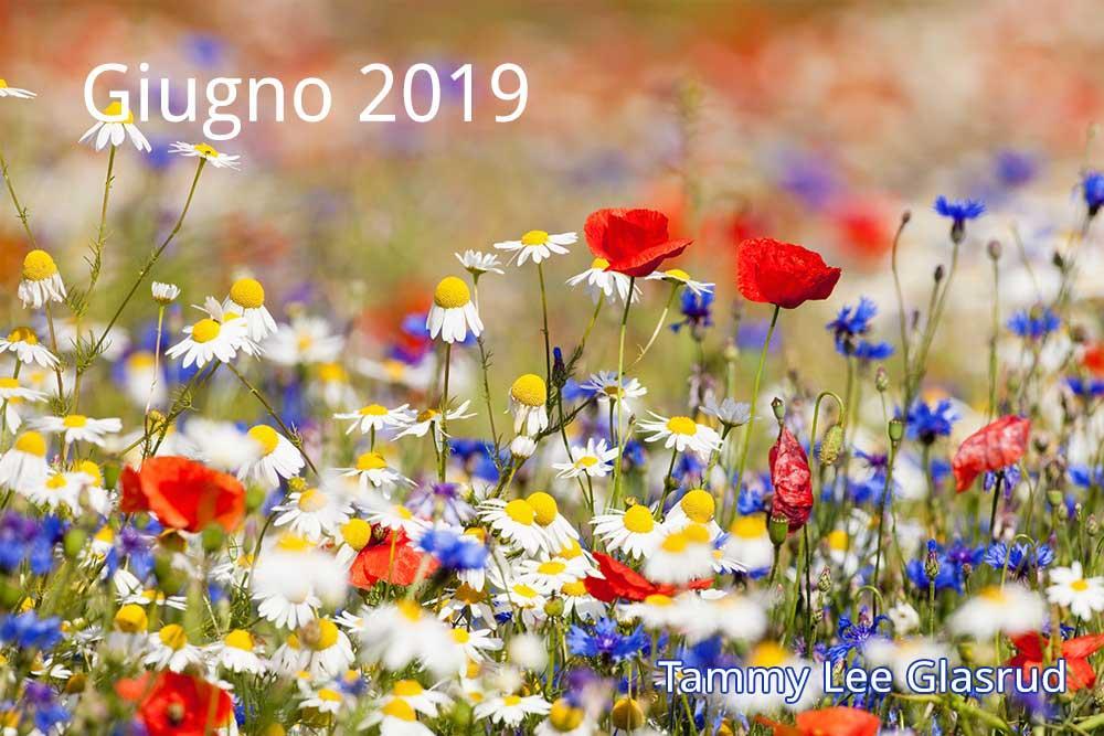 Giugno newsletter 2019
