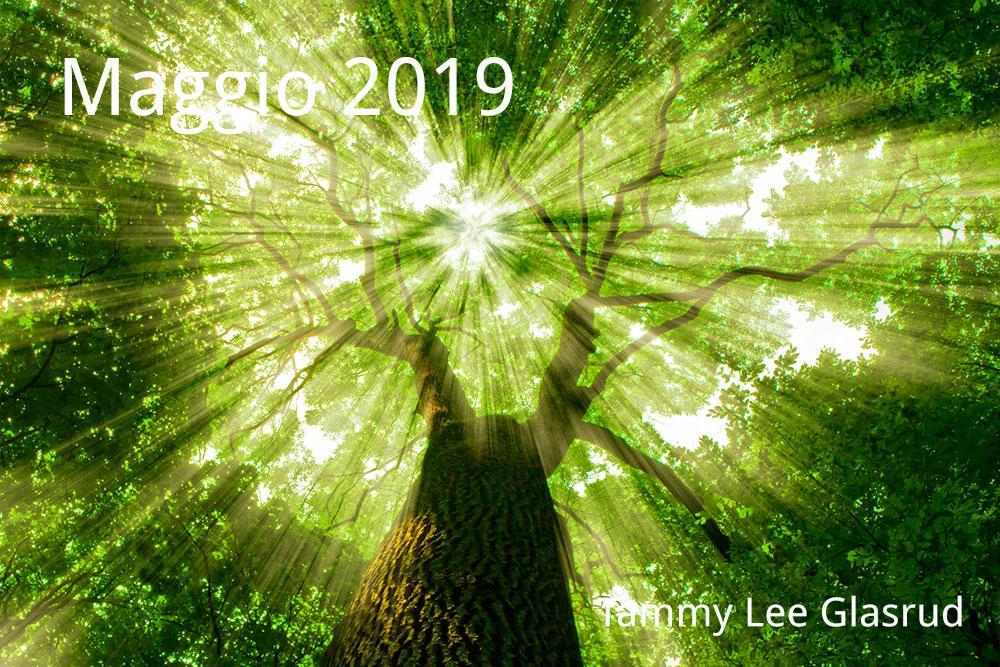 Maggio newsletter 2019