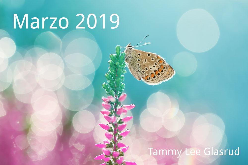 Marzo newsletter 2019