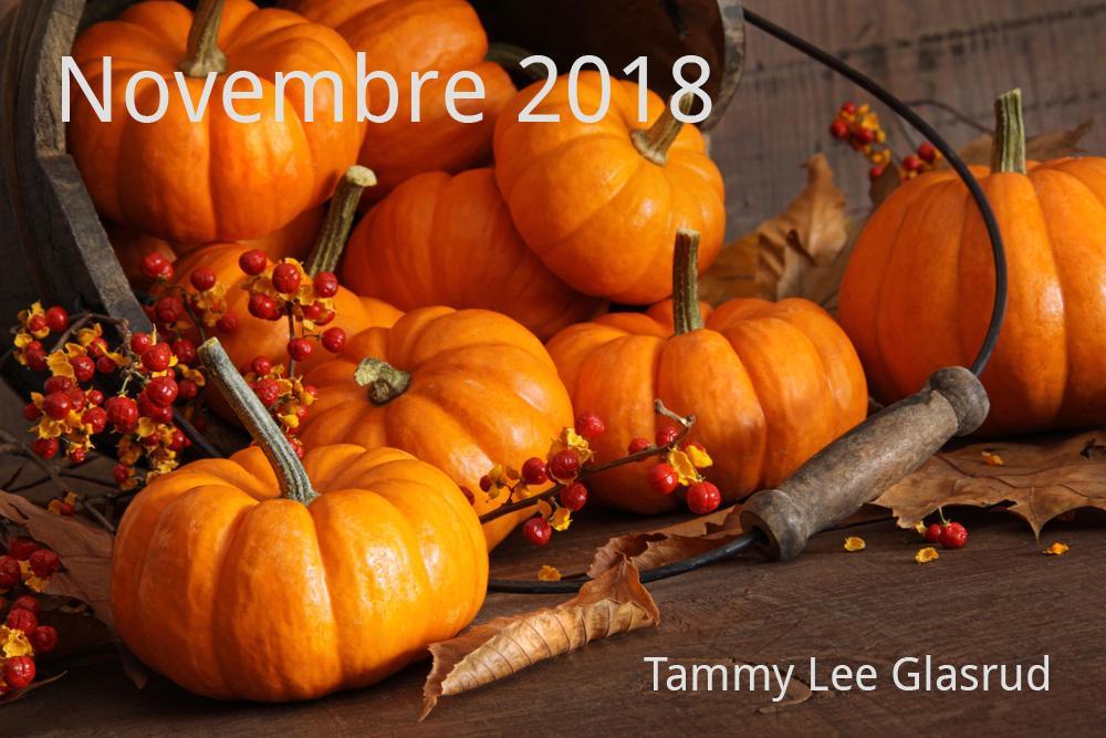 Novembre newsletter 2018
