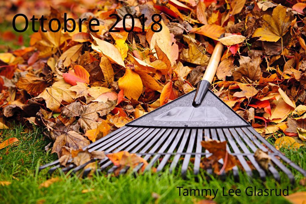 Ottobre newsletter 2018